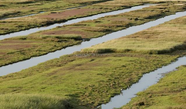 Deze foto toont de zogenaamde 'karrenvelden', een impressie hoe het landschap eruit komt te zien. FOTO: Natuurmonumenten.
