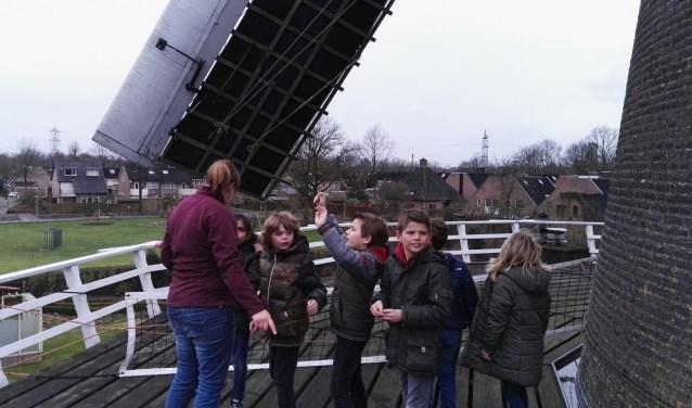 Kinderen van groep 5 van De Linde genieten van het uitzicht en de draaiende wieken op de stelling, ofwel gaanderij van molen De Korenaar.