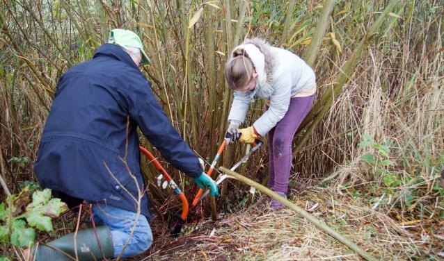 Op tal van plekken in en rond Zwolle kunnen vrijwilligers tijdens de 18e Natuurwerkdag werkzaamheden uitvoeren. (foto: August Grouw)