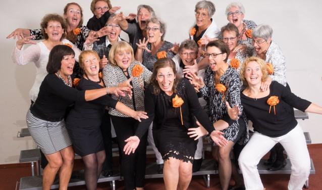 De Duketown Ladies heten u van harte welkom om een keer vrijblijvend te komen luisteren en/of mee te zingen.