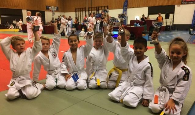 De jongste judoka's van Yotosama