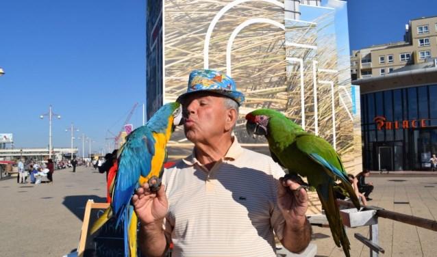 Salvatore op Scheveningen tijdens één van zijn 'optredens' met de vogels. (Foto: Indebuurt.nl)
