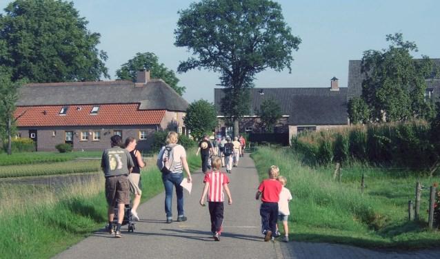 Wandelen op de Weebosch voor iedereen. Foto: Buurthuis 't Sant-Weebosch