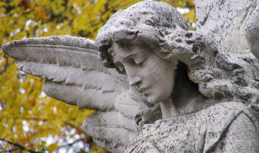 Nu de herfst zijn intrede heeft gedaan, zijn we eerder geneigd stil te staan bij de eindigheid van het leven. (Foto Pixabay)