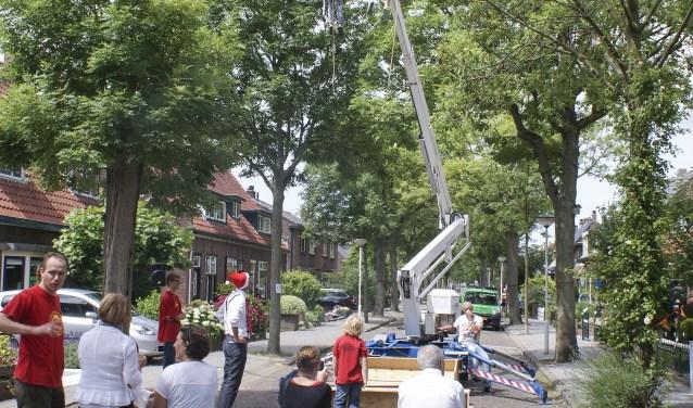 De bomen vormen een onmisbaar deel van het historisch aanzicht en de charme van de Molenstraat