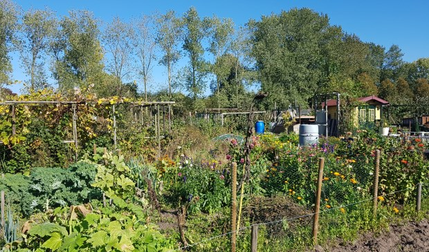 Tuincomplex De Koekelt, één van de zeven tuinen die Vat Ede faciliteert.