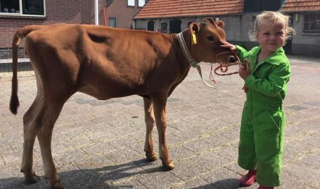 Op zaterdag 20 oktober opent de melkveehouderij van boer Jan de deuren tijdens de Lidl Boerderijdag.
