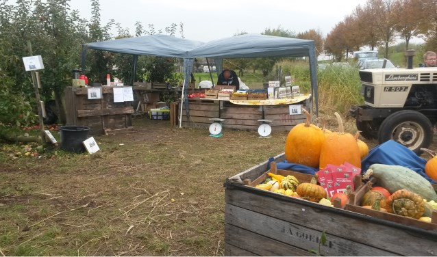 De Bommelse Zelfplukdagen gaan zaterdag 13 oktober van start met de Bommelse Appeldag. Zorg dat je zelf kisten en/of tassen meeneemt voor de appels.