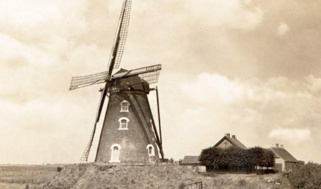 Molen aan de Zanddijk in Escharen: onttakeld in 1953 en gesloopt in 1955. (foto: eigen foto)