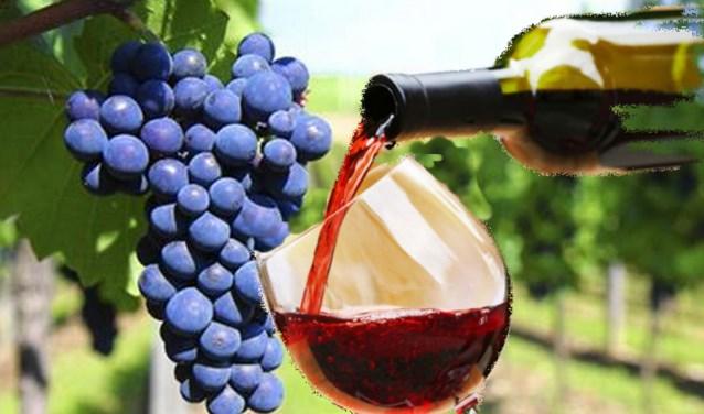wijn en druiven