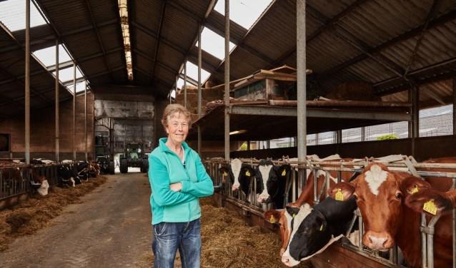 Op zaterdag 13 oktober nodigen tientallen boeren iedereen uit voor 'Bakkie bij de boer' FOTO: Jeroen van der Wielen
