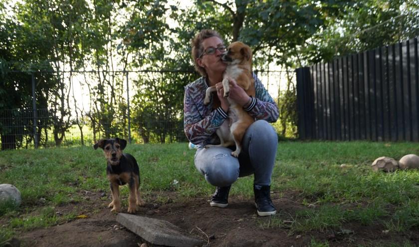 Wilma de Joode wil graag iets betekenen voor de dieren in het asiel. Dat brengt haar elke dag weer in beweging.Foto: Marielle Pelle