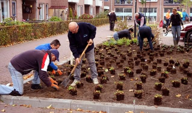 De vrijwilligers pakken het vierde project op het Burgemeester van de Braakplein aan. (foto: Tom Oosthout)