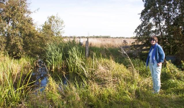 Alie de Boer WMR in het hart van het toekomstige natuurgebied