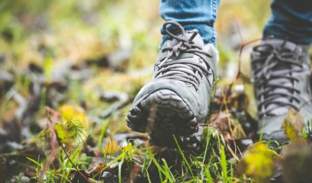 Lange dagwandeling-wandelschoenen