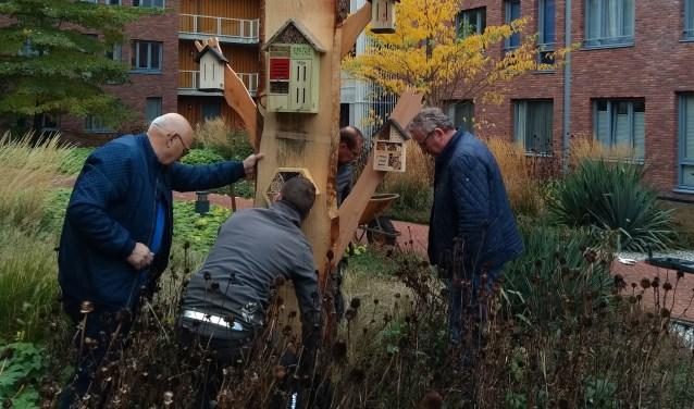 De tuinmannen van de Ginkelgroep, plaatsen samen met de maker Jannes v Marsdijk het insectenhotel, onder toeziend oog van secretaris Sjaak van Rijn van de BCH