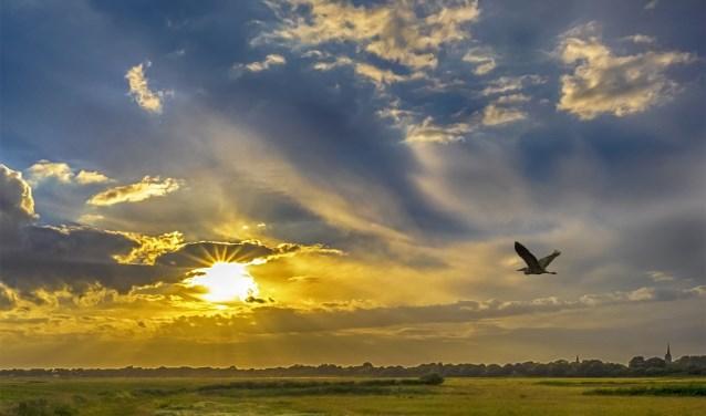 Ondergaande zon, gefotografeerd door Ben Meurs van IVN 's-Hertogenbosch e.o..