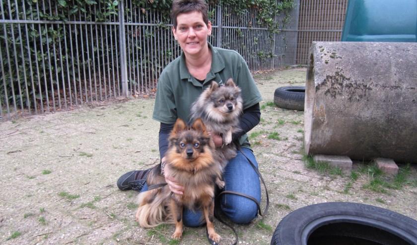 Sandra van Rooij met de twee  kleine blinde Keeshonden waarvoor ze nog een thuis zoekt, 'om ze te bieden wat ze zo nodig hebben'.