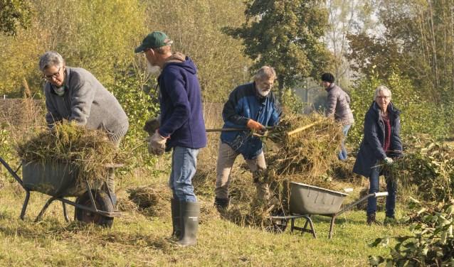 Deelnemers druk aan het werk op de Natuurwerkdag bij Buur maakt Natuur
