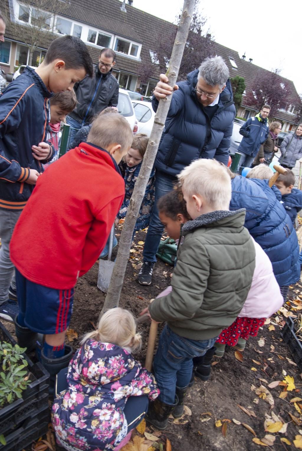 Wethouder Meijer plant samen met buurtkinderen de eerste boom. Foto: M.Brouwer © Persgroep