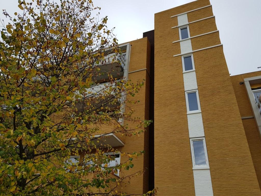 In de Uitvindersbuurt komen 29 appartementen aan het Huygenspark Foto: Woonstede © Persgroep