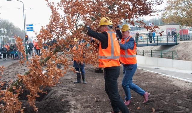 Samen met de twee wethouders plantte gedeputeerde Straat ter afronding van de werkzaamheden een boom in het plantvak langs de Lockhorsterweg. (Foto: Ronald Kersten Fotografie)