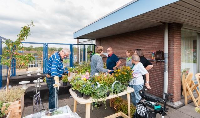 Uitbreiding (september 2018) van de daktuin van woonzorgcentrum Buytenhage Zoetermeer. Van de tuin komt veel plezier en de spierstruiken verhuisden naar de Geer & Goortuin beneden. Foto: Wilco Pot.
