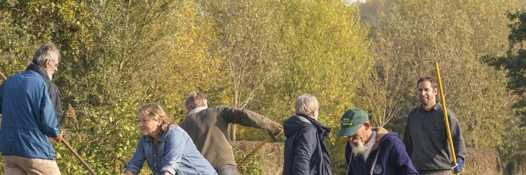 Deelnemers druk aan het werk op de Natuurwerkdag bij Buur maakt Natuur Foto: Wilber Thus © Persgroep