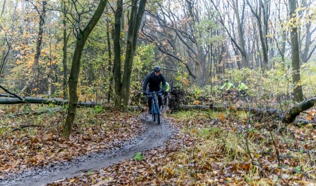 Dit jaar vindt de Heide- en duinentocht plaats op zondag 11 november.