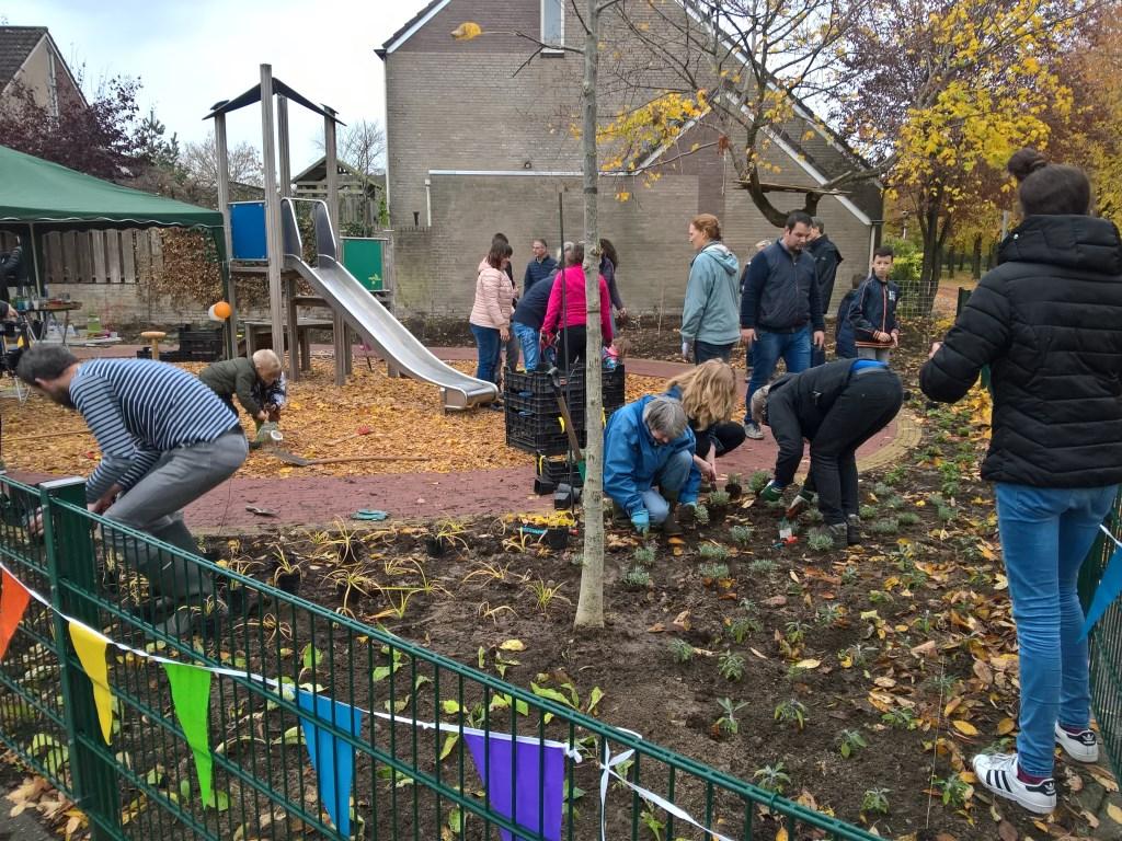 buurtbewoners van Lucas de Kockstraat en Fernhoutstraat planten samen eetbaar groen. Foto: T.Springer © Persgroep