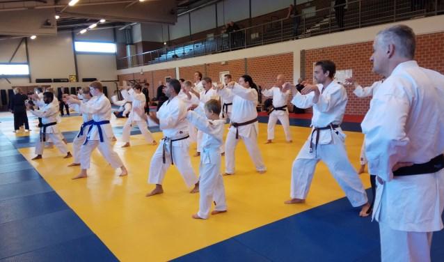Deelnemers van de budodag volgen een karate les.
