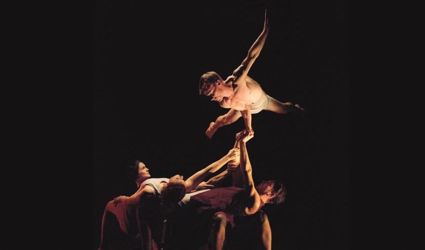 Het vijftal van Casus Circus brengt op 23 november 'Driftwood' naar Tiel