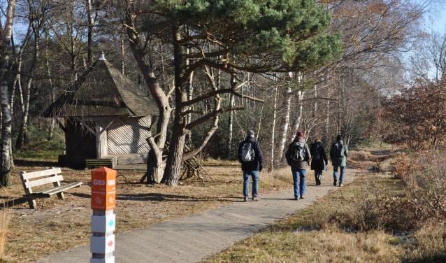 Wandelen in de frisse winterkou en meer leren over de Sallandse Heuvelrug.