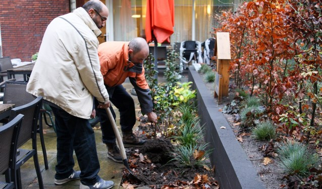 Vrijwilligers van de Stichting HORNBACHhelpt knapten op 7 december de belevingstuin van Molenstaete op.
