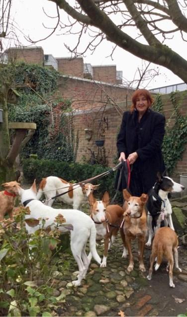 Carolien Koopman, een van de exposanten, redde zeven honden uit Spanje. Met deze honden ging Nell Annink op de foto. Foto: Carolien Koopman