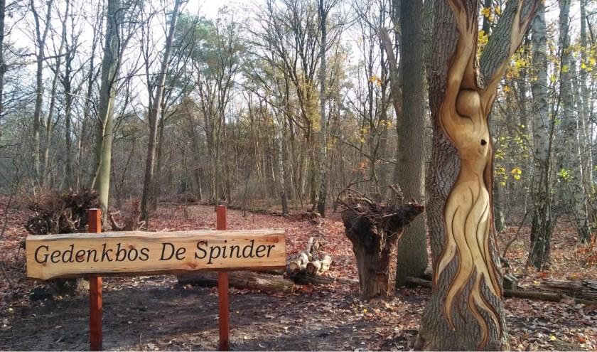 Nabestaanden kunnen op het strooiveld onder de bomen de as van hun overleden dierbare aan de natuur teruggeven.