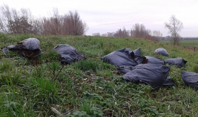 De afvalzakken op het talud van de Ooysedijk. (foto: PR)