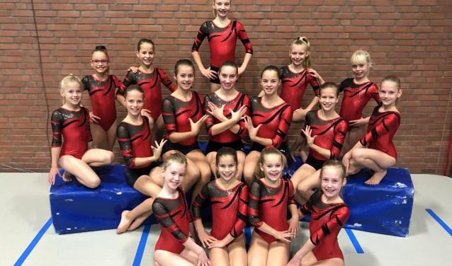 Deze meiden mogen eind januari de regiofinale turnen in Wierden. Foto: Jolien Altena.
