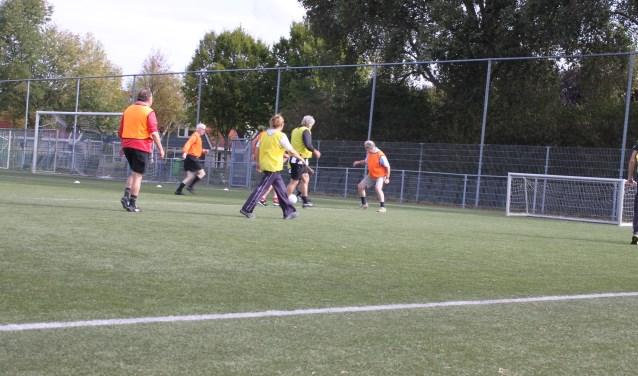 Bij RKSV Mierlo-Hout hebben zich al 24 belangstellenden gemeld. Foto: Romy Chatrou-van der Sande.