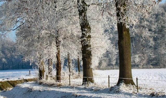 Landschap Haart