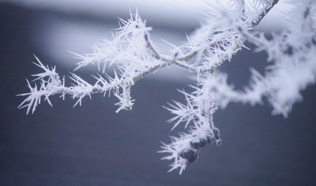 Als het echte winterweer toeslaat is niets zo lekker als een verse (warme) oliebol.