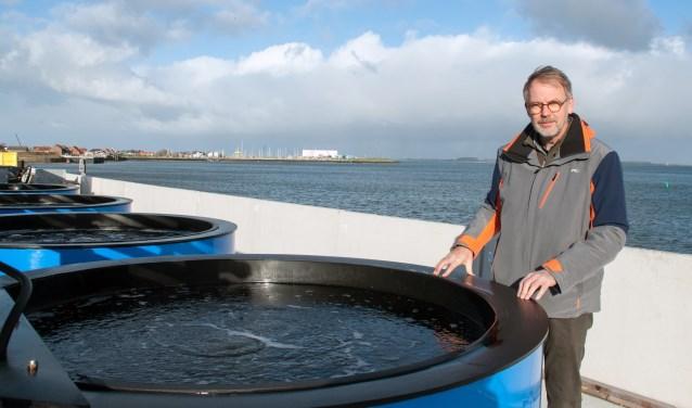 Onderzoeker Jacco Kromkamp bij een van de tanks waar onderzoek wordt gedaan naar algen. FOTO: Carrie Frederiks