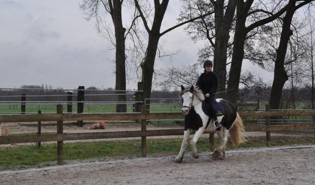 'Paardenklas' gaat van start op Aeres VMBO Maartensdijk