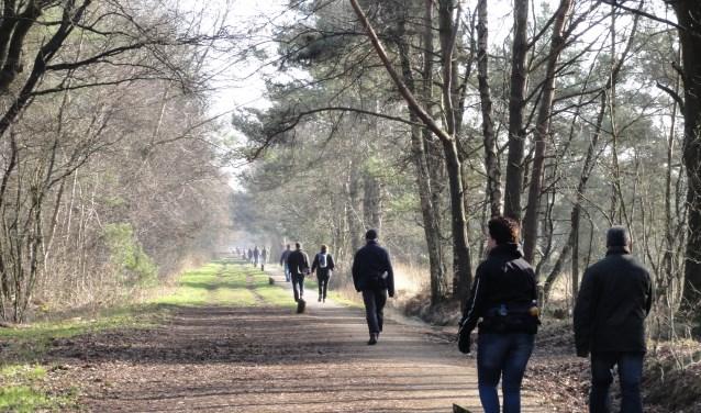 Liefhebbers kunnen zondag al wandelend genieten van de Haaksbergse natuur.