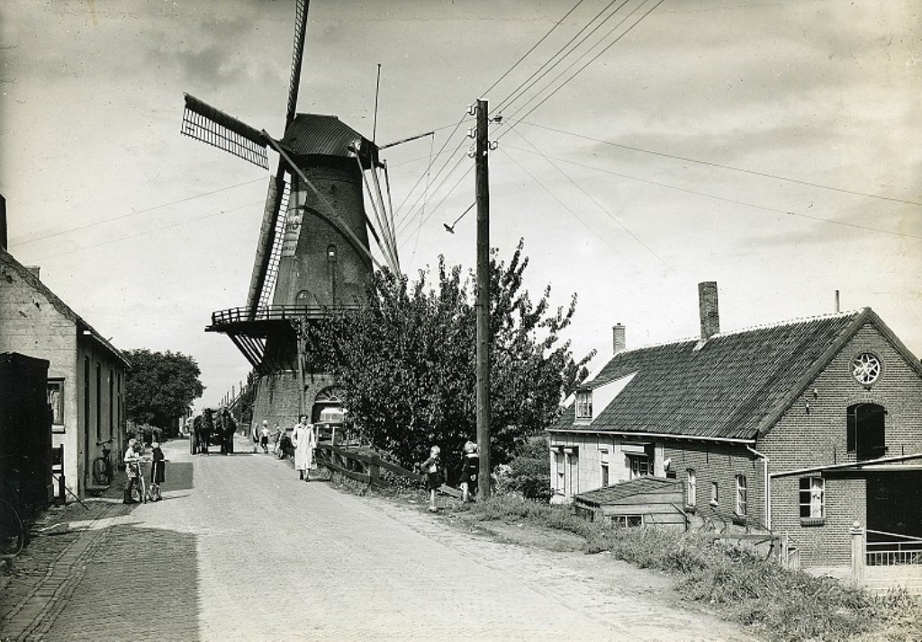 's-Gravendeel, Molendijk Foto: HVG © Persgroep