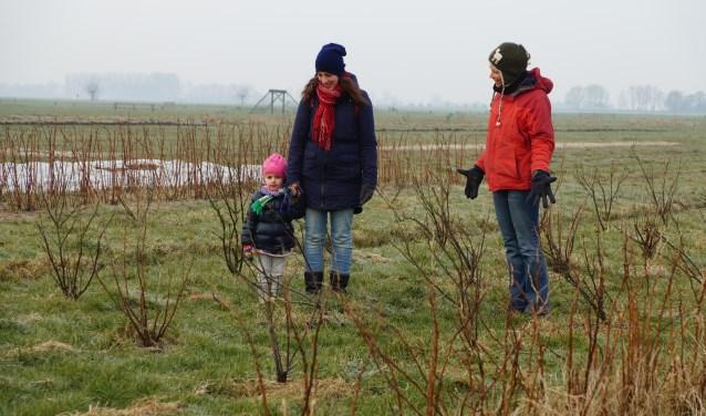 Lidia van Bodegraven met dochtertje is aandeelhouder bij Tuinderij De Groenteboer van Elsbeth van Apeldoorn. In het oogstseizoen is ze hier wekelijks te vinden om zelf groenten te oogsten voor haar gezin.