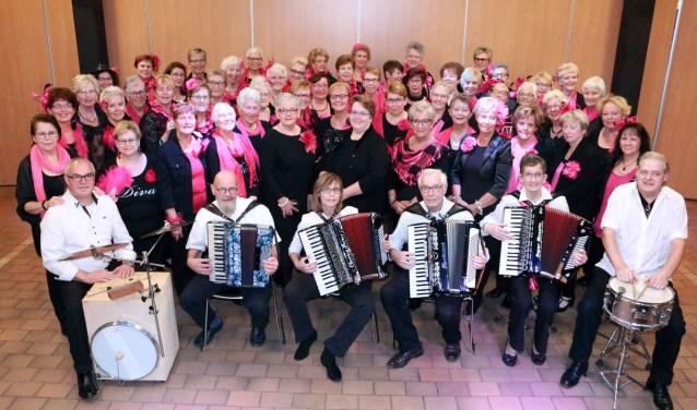 De Dolle Diva's zingen met name levensliederen, smartlappen en andere meezingers van diverse Nederlandstalige artiesten.