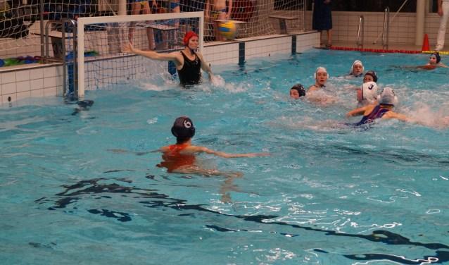 De waterpolosters van Zwemclub Losser presteren dit seizoen prima in de tweede klasse Bond.