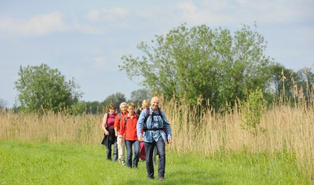 In 2017 werd het 100ste Klompenpad geopend. . En aan het eind van het jaar stond de teller op 105 Klompenpaden. Dat staat garant voor 1.646 km wandelplezier in de provincies Utrecht en Gelderland!