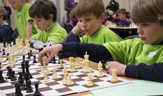 Opperste concentratie tijdens de voorronde van de districtskampioenschappen schaken voor scholieren. (Foto: Rob Weekers)